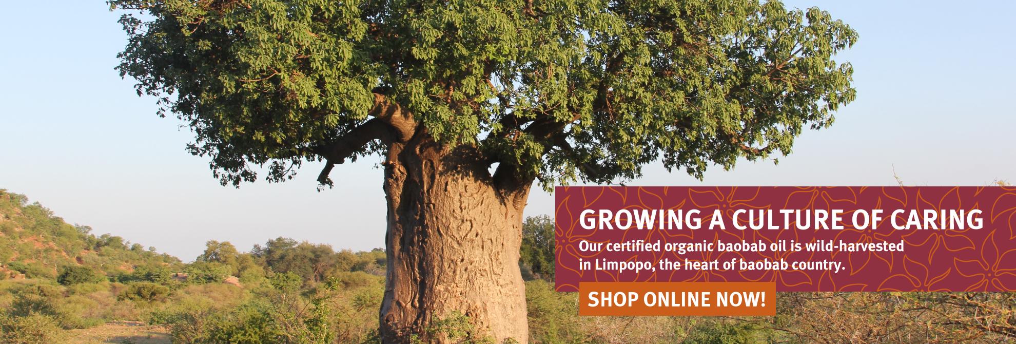 Baocare