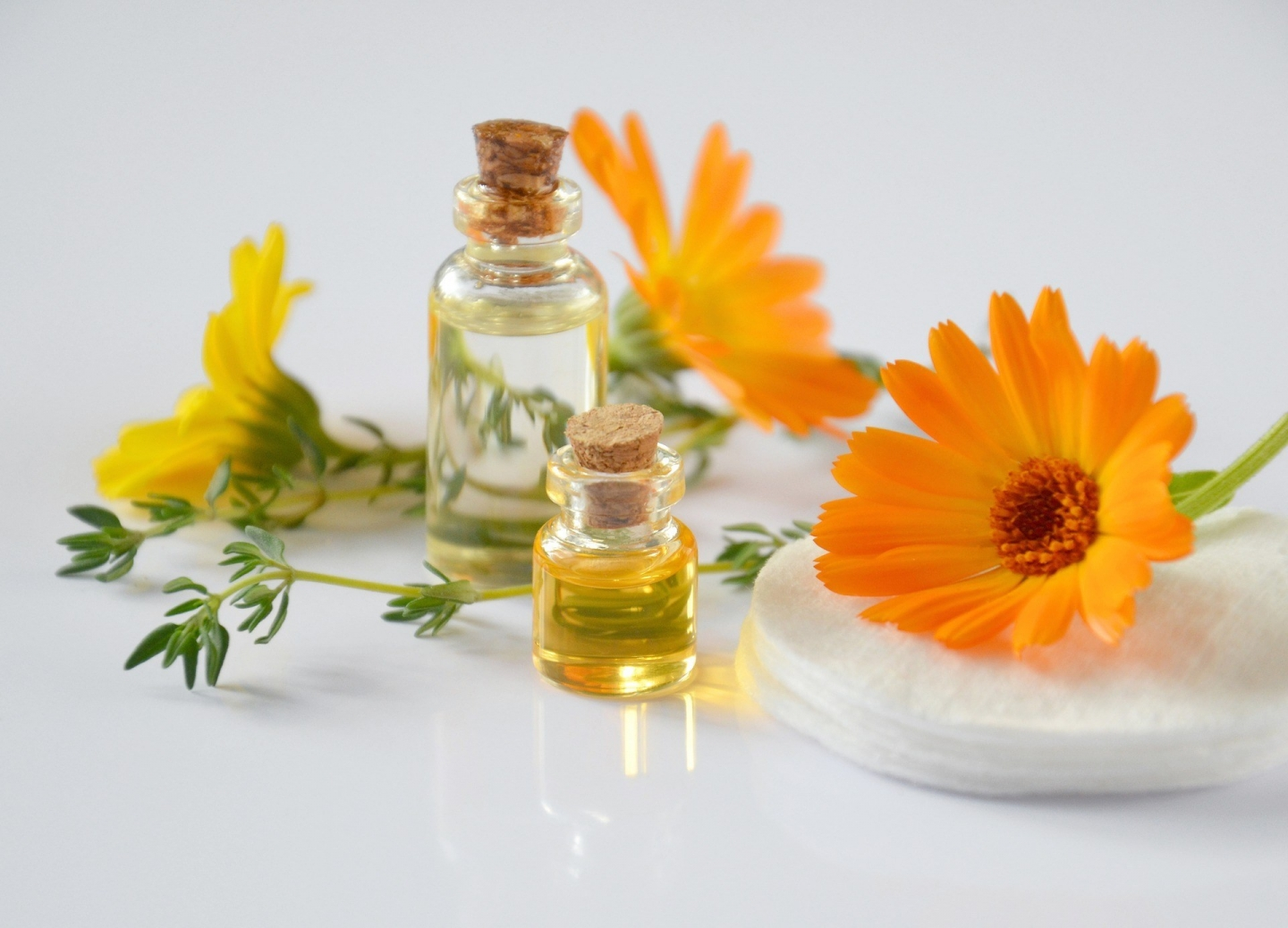 Gentle Eczema Healing with Calendula
